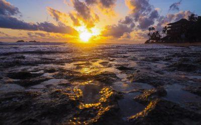 SRI LANKA: la perle de l'océan indien 🇱🇰